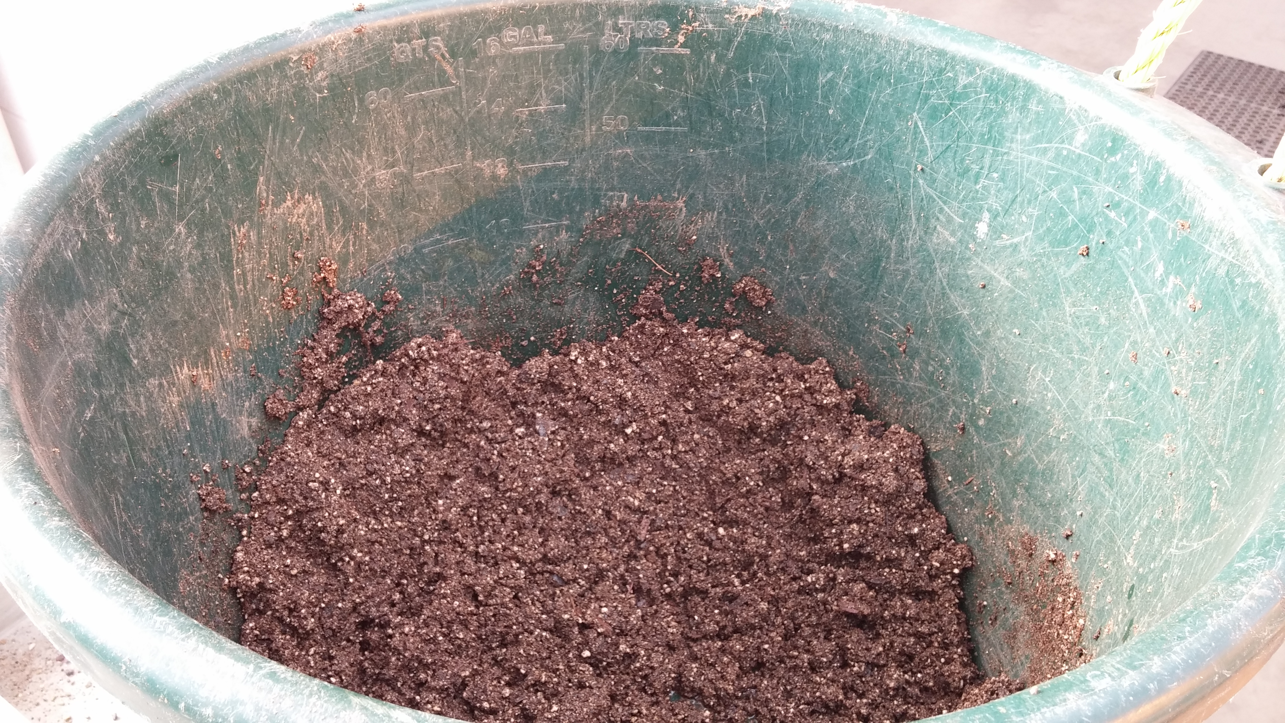 Example of moistened soil mix in preparation of seeding.